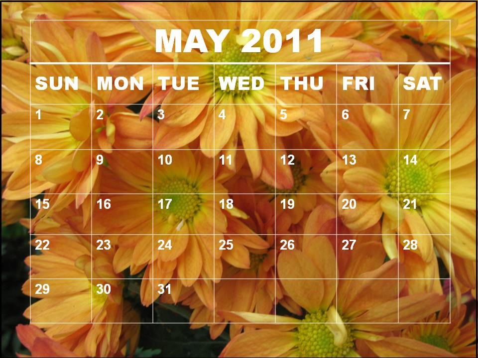 monthly calendar 2011 may. monthly calendar template 2011