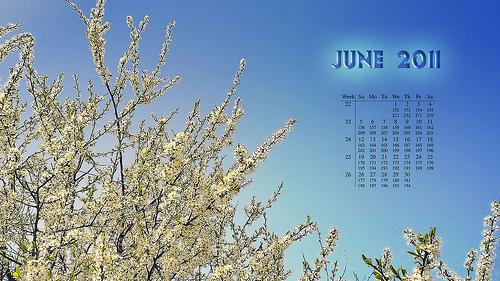 June 2011 Youth Calendar